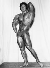 (BODYBUILDERS) studio arax Group of more than 50 photographs of buff French men,