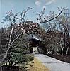 (ARCHITECTURE.) Yanagui, R; and Foujimoto, S. La Villa Impériale Katsura.