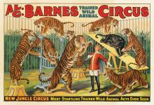 DESIGNER UNKNOWN. AL. G. BARNES CIRCUS / NEW JUNGLE CIRCUS. Circa 1924. 28x41 inches, 71x104 cm. Eerie Litho. Ptg., [Eerie.]
