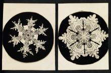 WILSON A. BENTLEY (1865-1931) An album with 25 photographs of snowflakes.