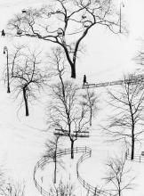 ANDRÉ KERTÉSZ (1894-1985) Washington Square, Winter.