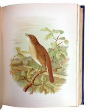 (BIRDS.) Butler, Arthur G. Birds of Great Britain and Ireland.
