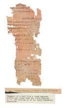 (MANUSCRIPT LEAVES.) Three papyrus leaves,