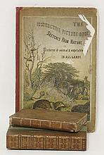 1.  Book-Keeping.  L, Cradock, 1811.  CONDITION: G+;  2.  Wagner, H: The instructive picture-book.  L, E Stanfor, 1877. With many colour lithograph plates.  CONDITION: A few loose & frayed;  3.  And one other   (3)