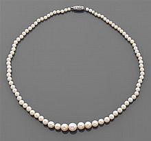 Collier perles fines Il est composé de quatre-vingt sept perles fines disposées en chute. Fermoir barillet en platine pavé de diaman...