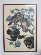 Summer of Wood Ducks Print No24