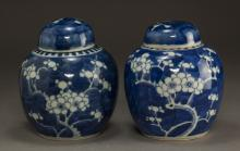 Pair of Chinese Blue and White Vases with Lid