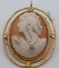 Gold Filled Cameo