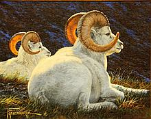 Dall's Sheep, oil painting by Tom Mansanarez