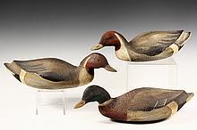 (3) DECOYS - Mallard Duck Decoys in painted pine, by Betty Tyler of Brunswick, Maine. 19