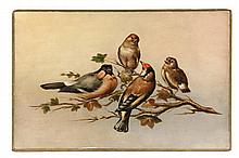 OIL ON PANEL - Four Birds on a Branch, third quarter 19th c, unsigned, probably continental. Unframed. SS: 7 7/8