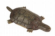 TURTLE FISHING DECOY - Rare Folk Art Painted Wood Turtle Decoy, late 19th c., a fully functional weighted and balanced swimmer with lead weight implanted in underside, screw eye at front of shell. Wonderful paint. 8