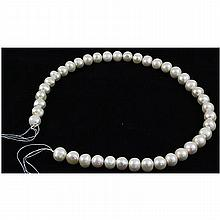 283.16ct Ivory White Freshwater Pearl Necklace, 16in - L15762