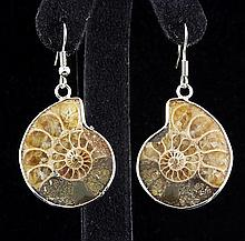 10.60GRAMS AMMONITE FOSSIL GEMSTONE SNAIL EARRING - L19662