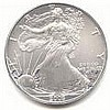 Uncirculated Silver Eagle 2005 - L17927