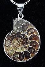 11.12GRAMS AMMONITE FOSSIL GEMSTONE SNAIL PENDANT - L19661