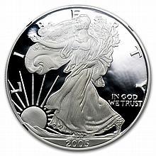 2005-W Proof Silver American Eagle PF-69 NGC (Retro Black Insert) - L27130