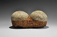 Natural History - Hadrosaur Fossil Egg Pair