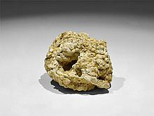 Natural History - Fossil Coral 'Head'