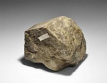 Natural History - Fossil Camarasaurus Partial Leg Bone