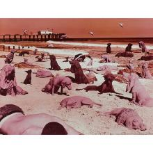 Sandy Skoglund, (American, b. 1946), Dogs on the Beach, 1994, color lithograph, 17