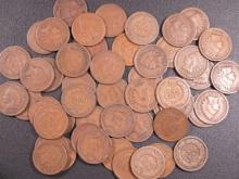 (50) Indian Head Cents- Circulated