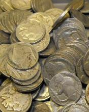 Lot of 75 Buffalo Nickels-