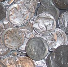 Lot of 50 Buffalo Nickels- Circulated Coins-1883-1