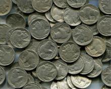 Lot of 50 Buffalo Nickels
