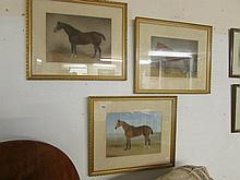 3 fine framed and glazed watercolours of horses (with label on reverse