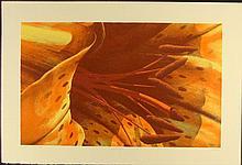 Jack Hagman Signed Flower Art Print Tiger Tiger 1981