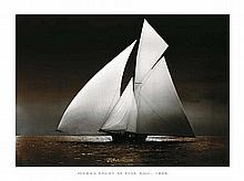 Photography Collection Iverna Yacht at Full Sail, 1895