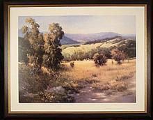 Jennie Tomao Landscape Large Framed Art Print