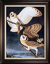 Owls by John James Audubon Giclee