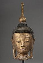TETE de Buddha à la beauté juvénile, coiffée de fines bouclettes hérissées terminée par un haut rasmi en stupa sortant de l'ushnisha.