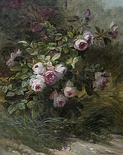 Henri Émile BRUNNER-LACOSTE (1838-1881)