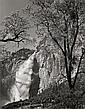 Ansel Adams YOSEMITE FALLS, SPRING, YOSEMITE NATIONAL PARK, CALIFORNIA