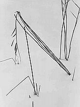 Siegfried Lauterwasser, Untitled (grasses in the s