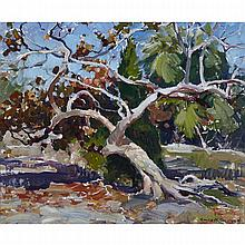 Emile Albert Gruppe (1896-1978), THE BANYAN TREE, FLORIDA, Oil on canvas; signed lower right, 20
