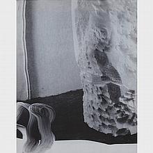 JILLIAN KAY ROSS, UNTITLED, digital painting printed on fabric, 20 ins x 16 ins; 50.8 cms x 40.6 cms