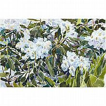 ROGER SAVAGE (1941 - ), R.C.A., RHODODENDRON & LILY OF THE VALLEY, WATERCOLOUR; SIGNED AND DATED 87 LOWER LEFT; TITLED VERSO, 15