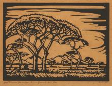 Jacob Hendrik Pierneef (South African 1886-1957) DORINGBOME (NILANT 91) lin