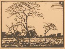 Jacob Hendrik Pierneef (South African 1886-1957) DORINGBOOM IN VELDLANDSKAP