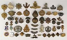 20th Century: Collection of British and Irish military badges