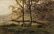 Nathaniel Hone RA (1718-1784) THE SILVER BIRCH