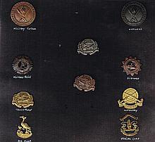 Oglaigh na hEireann, Irish Army badges (10)
