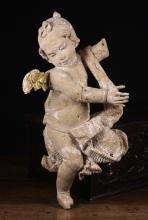 An Early 18th Century Carving of a Airborne curly-haired Cherub depicted with a ribbon tied around the head, draped in a swagged cloth, with residual paintwork and gilded wing (A/F) 24 ins (61 cms) in height.