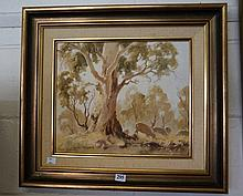Oil painting of gum trees & sheep by Frank Mutsaers