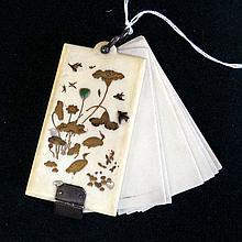 C19th Japanese ivory shibayama notebook/aide memoire