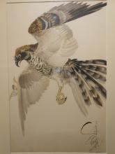 Works On Paper: Paintings, Drawings, Fine Prints & Posters